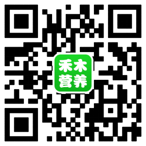 网页二维码